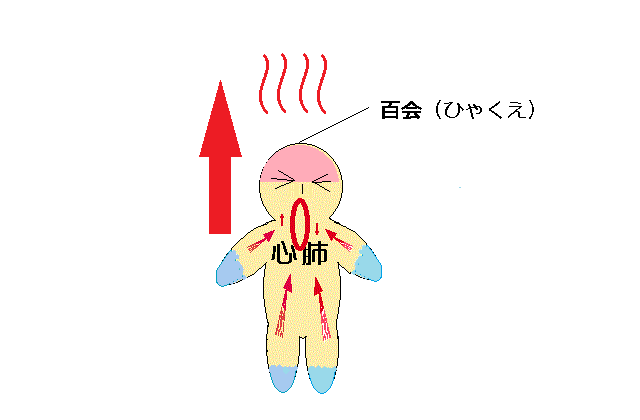 脳⇔心肺の循環へ血液が集まり昇る図.png